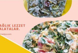 Salata deyince akla ilk gelen renkli salatalar..